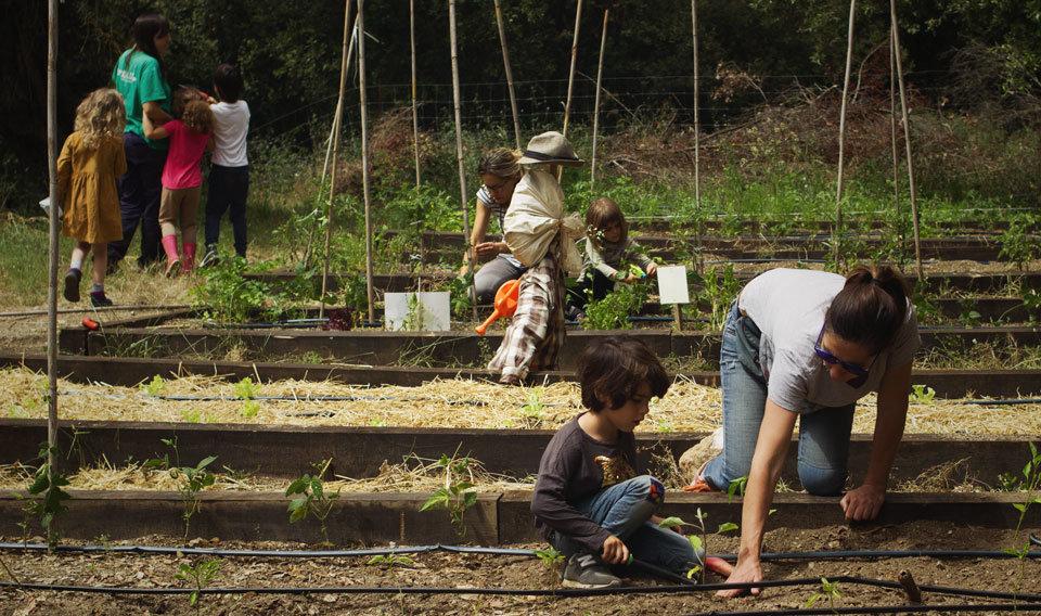 Nens i nenes experimenten, s'interessen i aprenen lliurement en l'espai natural, en una proposta més de L'Ortiga