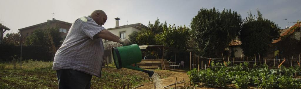 """Parcel·la del programa """"Cultiva't"""", autogestionada per un antics participants del projecte Aterra."""