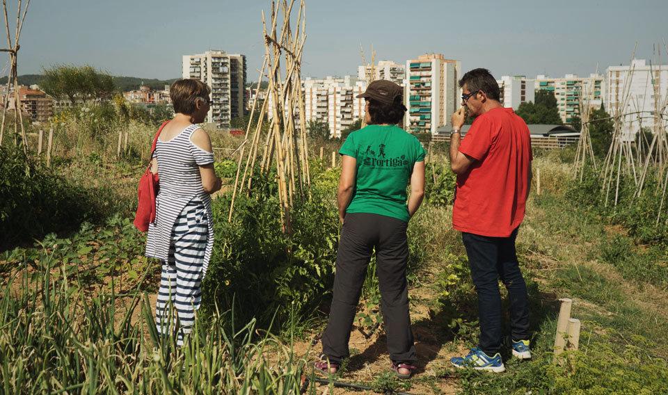 Un dels membres de l'equip de L'Ortiga duent a terme el seguiment d'un hort urbà, juntament amb dos veïns beneficiaris.